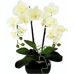 Kunstpflanze Phalaenopsis, I.GE.A., Höhe 58 cm weiß