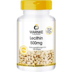 LECITHIN 500 mg Kapseln 250 St.