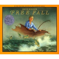 Free Fall als Buch von David Wiesner