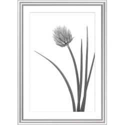 Bilderrahmen ELEGANCE silber (BH 76x56 cm)