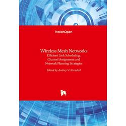 Wireless Mesh Networks als Buch von
