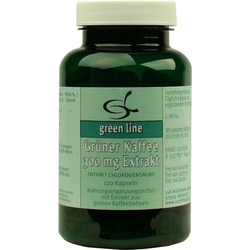 GRÜNER KAFFEE 300 mg Extrakt Kapseln 120 St