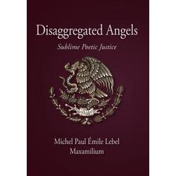 Disaggregated Angels als Buch von Maxamilium
