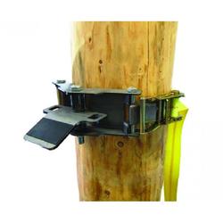 Baumhalteplatte mit Ratschengurt 50 mm x 3 m