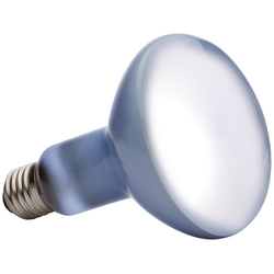 Exo Terra Daylight Basking Spot Spezialleuchtmittel, E27, Warmweiß, 150 Watt