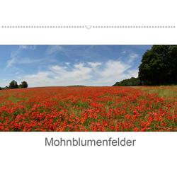 Mohnblumenfelder (Wandkalender 2021 DIN A2 quer)