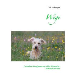 Wege als Buch von Dirk Eickmeyer