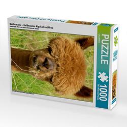 Beatlemania – Hellbraunes Alpaka kaut Gras Lege-Größe 48 x 64 cm Foto-Puzzle Puzzle