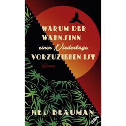 Warum der Wahnsinn einer Niederlage vorzuziehen ist als Buch von Ned Beauman