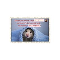 Oft braucht man im Leben zwei Dinge: Ein dickes Fell, wie ein Bär und kleine Ohren, wie eine Maus.
