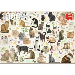 Katzen Poster - 1000 Teile Puzzle