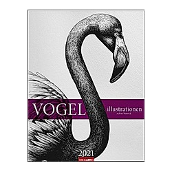 Vogel Illustrationen 2021