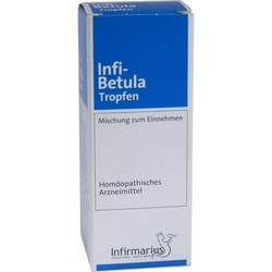 INFI BETULA Tropfen 50 ml