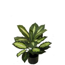 Dieffenbachia 50 cm, künstliche Dekopflanze, Kunstpflanze