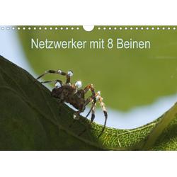 Netzwerker mit 8 Beinen (Wandkalender 2021 DIN A4 quer)