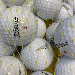 'Lakeballs Titleist DT SoLo 25er Netz Qualität AAA/AA weiss'