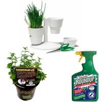 Pflanzen &  Pflanzenzubehör