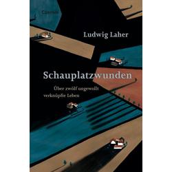 Schauplatzwunden als Buch von Ludwig Laher