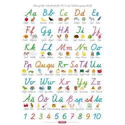 Fragenbär-Lernposter: Mein großes Schreibschrift-ABC in der Schulausgangsschrift (SAS)