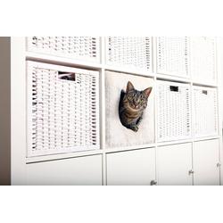 TRIXIE Tierbett passend für z.B. IKEA Kallax oder Expedit, Katzenhoehle