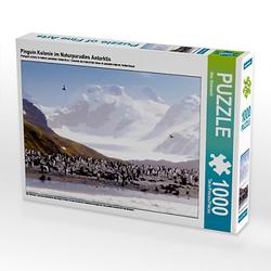 Pinguin Kolonie im Naturparadies Antarktis Lege-Größe 64 x 48 cm Foto-Puzzle Bild von Max Steinwald Puzzle