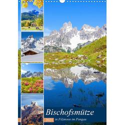 Bischofsmütze (Wandkalender 2021 DIN A3 hoch)