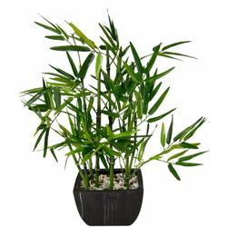 Kunstpflanze Bambus Bambus, I.GE.A., Höhe 45 cm