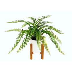 Kunstpflanze Farnbusch, I.GE.A., Höhe 35 cm, Im Topf mit Gestell