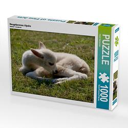 Neugeborenes Alpaka Lege-Größe 64 x 48 cm Foto-Puzzle Bild von Heidi Rentschler Puzzle