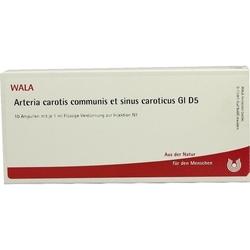ARTERIA CAROTIS COMMUNIS et sin.carot.GL D 5 Amp. 10 ml