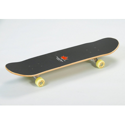 Spartan Sport Skateboard Top Board