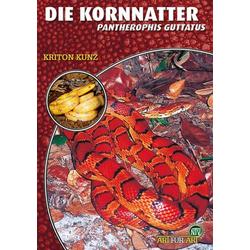 Die Kornnatter als Buch von Kriton Kunz