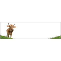 Küchenrückwand - Spritzschutz profix, Kuh, 220x60 cm weiß