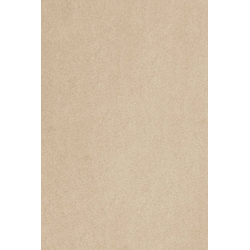 Teppich Proteus, aus Econyl® Garn, Meterware in 400 cm Breite natur 400 cm