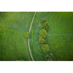 AS Creation AP Digital Birdview Fototapete Größe 3,00m x 2,50 m L 475-419