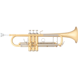 B&S 3178/2 E Elaboration Trompete EB-Oberflächenbehandlung
