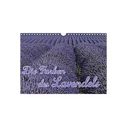 Die Farbe des Lavendels (Wandkalender 2021 DIN A4 quer)
