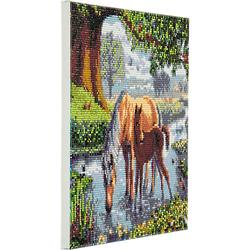 Crystal Art Kit auf Holzrahmen-Leinwand - Ponys, 30 x 30 cm mehrfarbig
