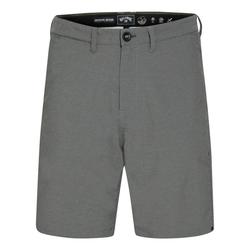 Billabong Shorts 33