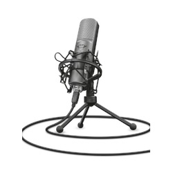 Trust Gaming GXT 242 Streaming Mikrofon Lance, Gaming-USB-Mikrofon