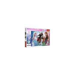 Trefl Puzzle Puzzle Magic Time - Disney Frozen 2, 300 Teile, Puzzleteile