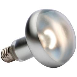 Exo Terra EX Tight Beam Tageslichtlampe Spezialleuchtmittel, E27, Tageslichtweiß, 150 Watt