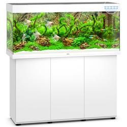 Juwel Rio 240 LED Aquarium mit Unterschrank, 121 x 41 x (55+73) cm, weiß