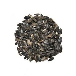 defu Bio-Sonnenblumenkerne schwarz, 14 kg