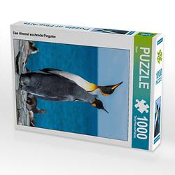 Den Himmel suchende Pinguine Lege-Größe 48 x 64 cm Foto-Puzzle Bild von Mehmet Sarialtin Puzzle