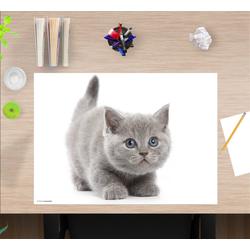 cover-your-desk.de Schreibtischaufsatz Schreibtischunterlage für Kinder – Süße graue Katze – 60 x 40 cm – aus hochwertigem Vinyl, (1-St)