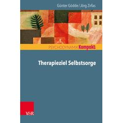 Therapieziel Selbstsorge: Buch von Günter Gödde/ Jörg Zirfas