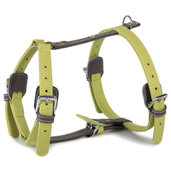 Das Lederband Geschirr Amsterdam Lime/Lava, Halsumfang: 25-45 cm