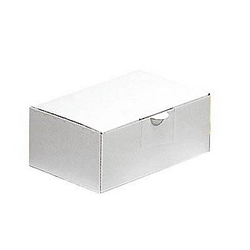 20 Nestler Versandkartons 26,3 x 17,9 x 10,5 cm