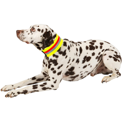 HEIM Hunde-Halsband Signalhalsband, Textil 55 cm - 56 cm